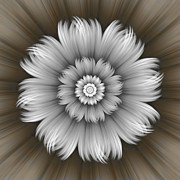Gabiw Art - Abstract Grey Flower