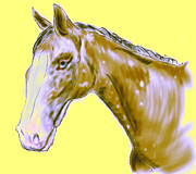 Donkey Digital Art Metal Prints - Abstract Horse  Metal Print by Mark Moore