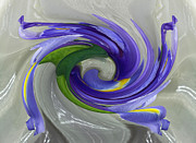 Abstract Iris Posters - Abstract Iris Flower Poster by Inspired Nature Photography By Shelley Myke