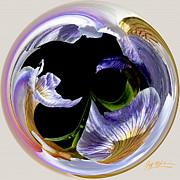 Jeff McJunkin - Abstract Iris Orb