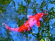 Ponds Digital Art Posters - Abstract Koi 4 Poster by Amy Vangsgard