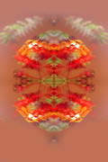 Warm Light Posters - Abstract Lantern Poster by Linda Phelps