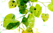 Bold Contrast Posters - Abstract Leaves Green and White  Poster by Ann Powell