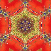 Annette Bingham - Abstract Mandala