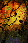 Cypress Knees Digital Art Posters - Abstract Of Great Blue Heron At Sunrise Poster by J Larry Walker
