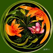 Jeff McJunkin - Abstract Orange Lily I