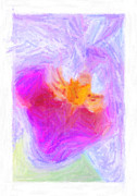 Abstract Orchid Pastel Print by Antony McAulay