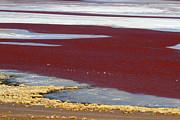 James Brunker - Abstract Patterns at Laguna Colorada