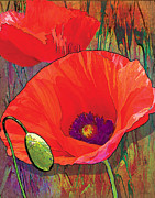 Grace Pullen - Abstract Poppy B