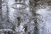 Puddle Digital Art Metal Prints - Abstract Raindrops Metal Print by Christina Rollo
