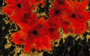 Floral Decor Digital Art - Abstract Red Flower Art  by Ann Powell