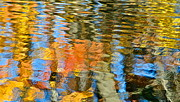 Liquid Gold Prints - Abstract Reflection Print by Robert Harmon