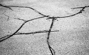 Crosswalk Photos - Abstract Road Cracks by Arindam Shivaani
