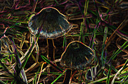 Immaterial Prints - Abstract Toadstools Print by Valarie Davis