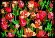 Brian Lambert - Abstract Tulips