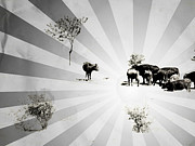 Tree Lines Posters - Abstract Vintage Cows Poster by Gabriela Insuratelu