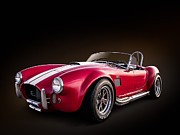 All - AC Cobra by Douglas Pittman