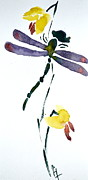 Wash Painting Originals - Acacion Dragonfly by Beverley Harper Tinsley