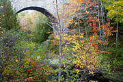 Acadia Carriage Bridge Print by Chris Scroggins
