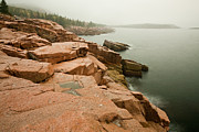 Brent L Ander Framed Prints - Acadia Fog near Monument Cove 4335 Framed Print by Brent L Ander