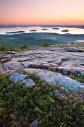 Down East Maine Photos - Acadia Morning by Patrick Downey