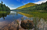 Carriage Road Photos - Acadia National Park-Bubbles Pond by Thomas Schoeller