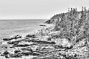 Emily Enz - Acadia National Park in...