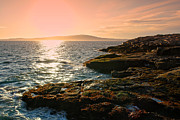 Acadia National Park Print by Olivier Le Queinec