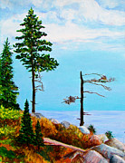 Suzanne Johnson - Acadia National Park...