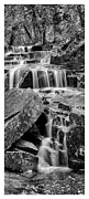 Acadian Waterfall Print by Chad Tracy