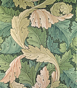 Green Light Green Prints - Acanthus wallpaper design Print by William Morris