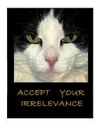 Tuxedo Cat Digital Art - Accept Your Irrelevance by Dale   Ford