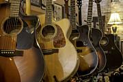 Lynn Palmer - Acoustic Guitar Display
