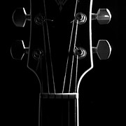 Music Print Posters - Acoustic Guitar Head Poster by Colleen McWilliams