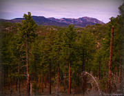 Prescott Photos - Across the Forest to Granite Mountain by Aaron Burrows