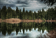 Across The Lake Print by Belinda Greb