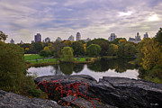 New York Buildings Prints - Across the Pond 2 - Central Park - NYC Print by Madeline Ellis