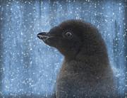 Adelie Winter Magic... Print by Nina Stavlund