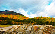 Adirondacks Digital Art Posters - Adirondack Autumn Poster by Betty LaRue