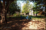 Nature Study Digital Art - Adirondack Chairs 5 - Davidson College by Paulette Wright