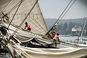 Brenda Giasson - Adjusting the Sails
