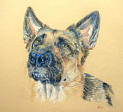 Police Dog Prints - Adoring Print by Liz  Lamb