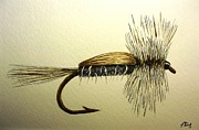 Jason Bordash - Adult Caddis