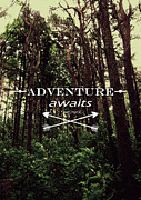 Nicklas Gustafsson - Adventure Awaits