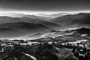 Andrea Bonavita - Aerial black and white