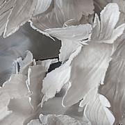 Leaves Sculpture Prints - Aerial detail 2 Print by Barkas Productions