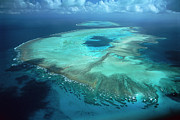 Australia Photographs Photos - Aerial View Of Heron Island by D Parer and E Parer Cook
