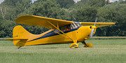 Guy Whiteley - Aeronca 11CC