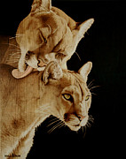 Mountain Lion Pyrography Prints - Affection Print by Minisa Robinson