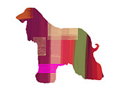 Quite Dog Prints - Afghan Hound 2 Print by Irina  March